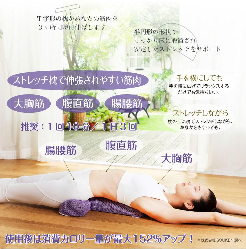 ストレッチ枕で伸張されやすい筋肉 大胸筋 腹直筋 腸腰筋