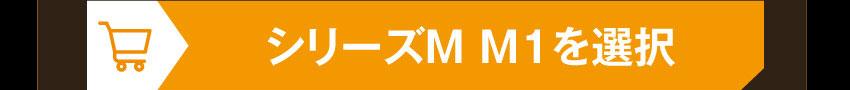 IE-M1 EVA-01を購入