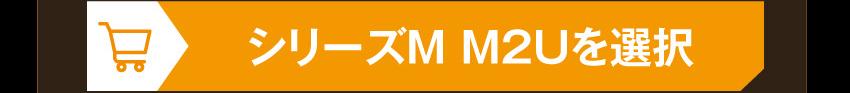 IE-M2U EVA-00を購入