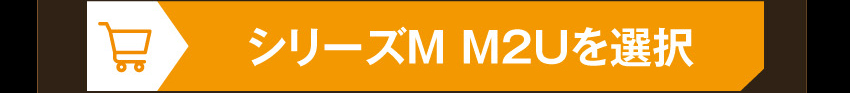IE-M2 EVA-02を購入