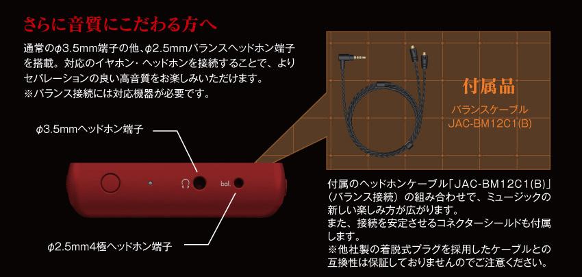 さらに音質にこだわる方へ バランスヘッドホン端子を搭載。 クリアケース レザー調ケース