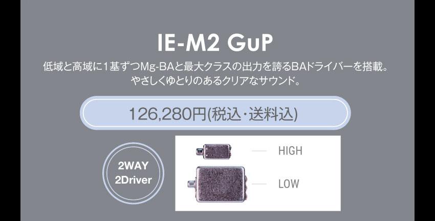 シリーズM IE-M2 GuP 126,280円税込・送料込