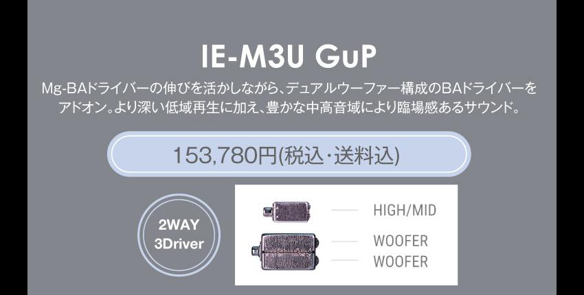 シリーズM IE-M3 GuP 170,280円税込・送料込