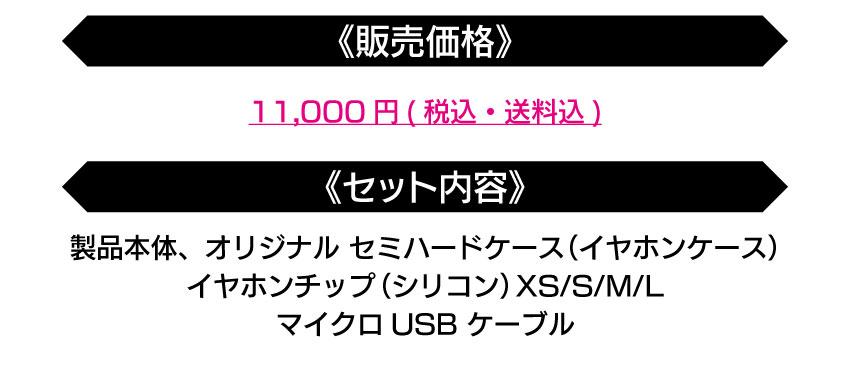 販売価格:11000円 セット内容 イヤホンケース イヤホンチップXS/S/M/L マイクロUSBケーブル