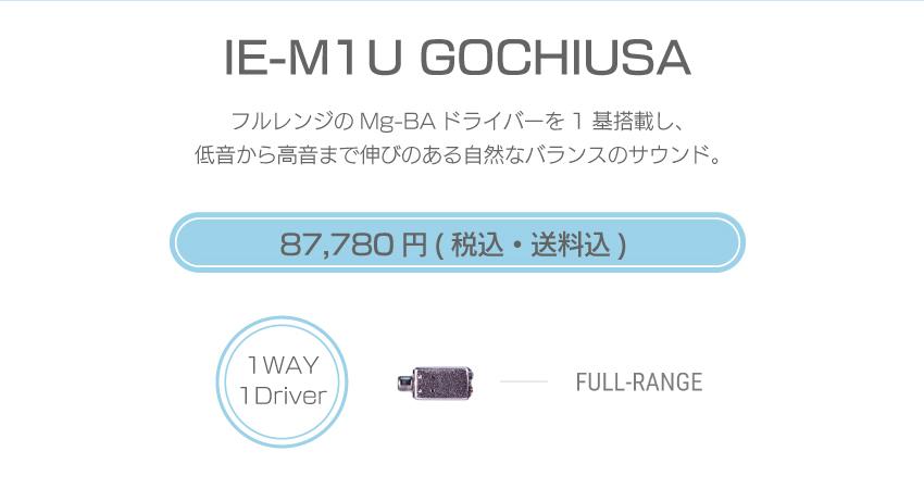 シリーズM IE-M1U-USA 104,280円税込・送料込